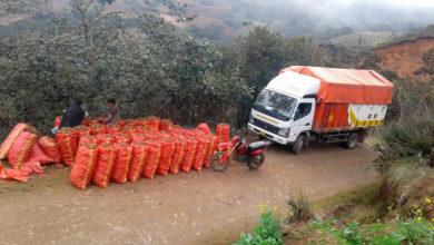 Photo of FUSO lanza iniciativa como homenaje a emprendedores camioneros que trabajan en tiempo de cuarentena